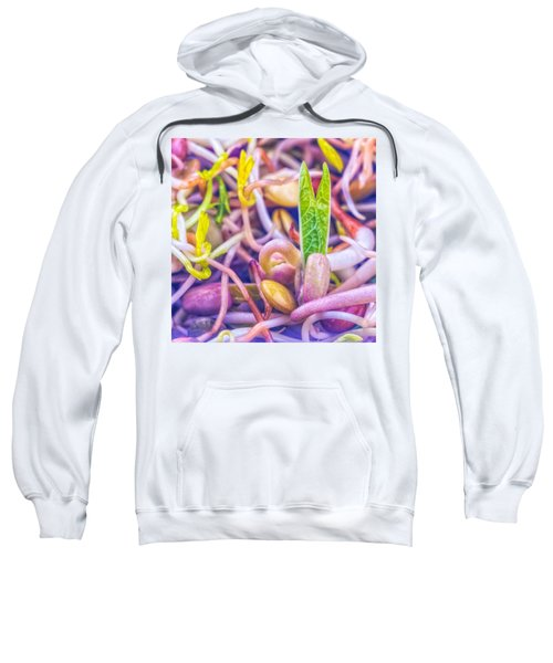 Sprouts Are Magic Sweatshirt