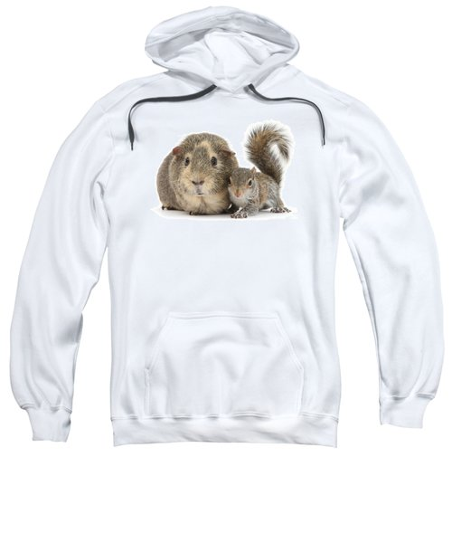 Squirrel And Guinea Sweatshirt