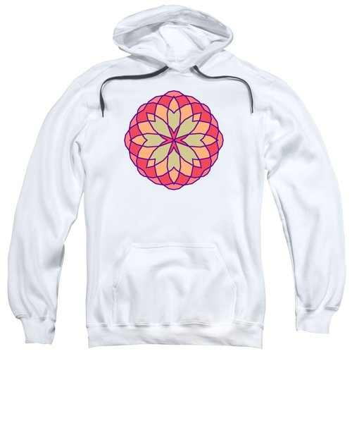 Stained Glass Sweatshirt by Methune Hively