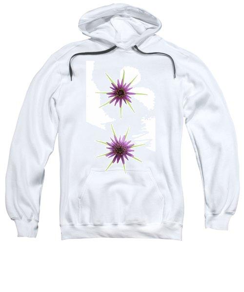 Stars Of Salsify Sweatshirt