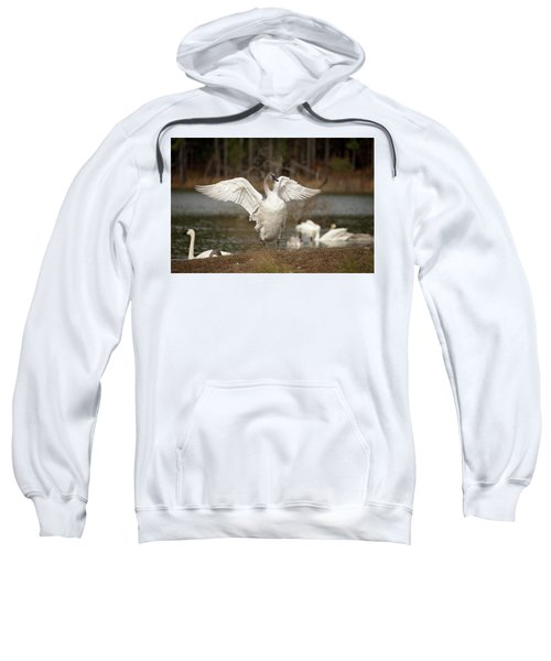 Stretch Your Wings Sweatshirt