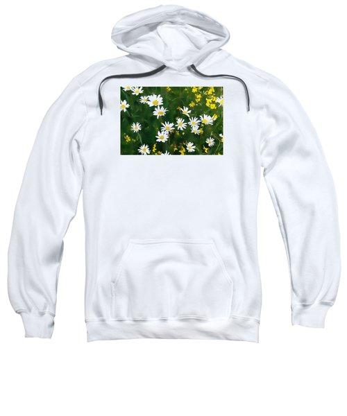 Summer Daisies Sweatshirt