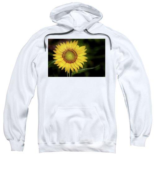 Summer Sunflower Sweatshirt