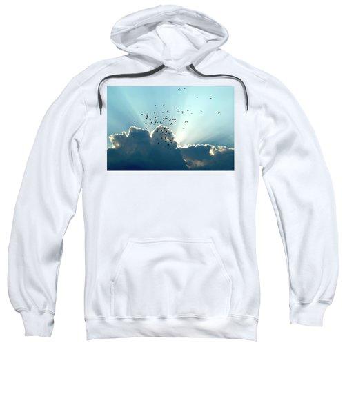 Sun Ray Aerobatics Blue Sky Sweatshirt