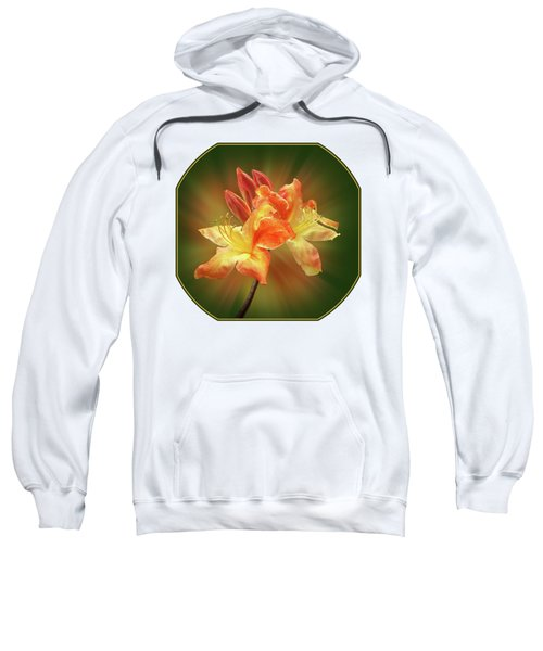 Sunburst Orange Azalea Sweatshirt