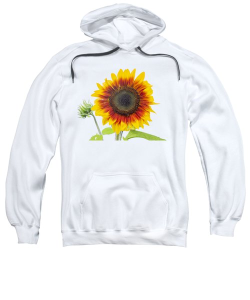 Sunflower 2018-1 Sweatshirt