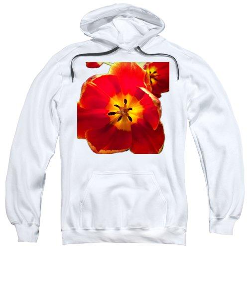 Sunkissed Tulips Sweatshirt