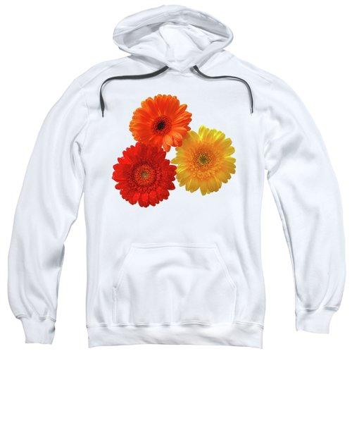 Sunny Gerbera Daisies Sweatshirt