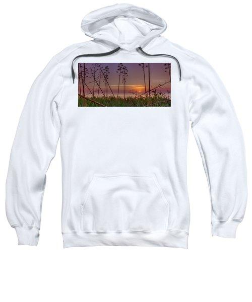 Sunrise Palm Blooms Sweatshirt