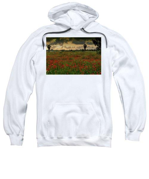Sunset On A Poppies Field Sweatshirt