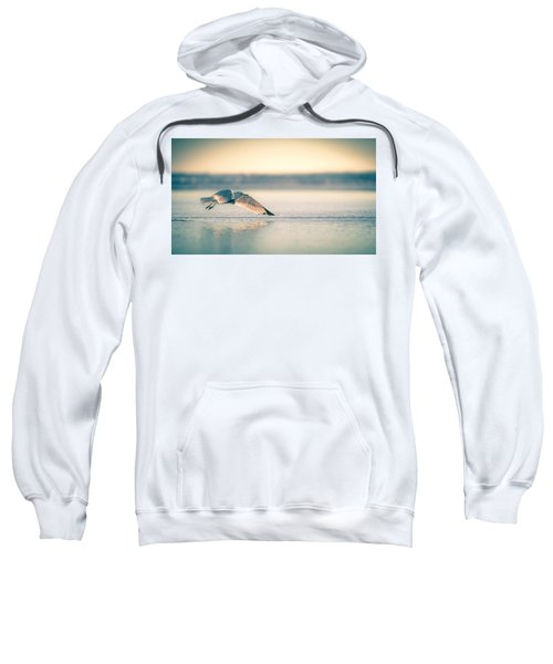 Sunset Seagull Takeoffs Sweatshirt
