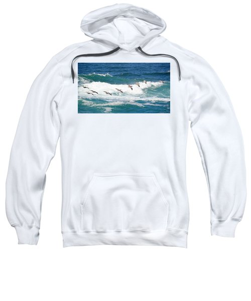 Surf And Pelicans Sweatshirt