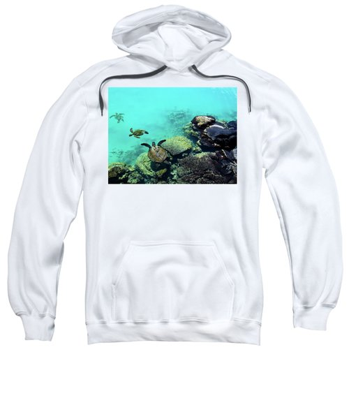 Swimming Honu Sweatshirt