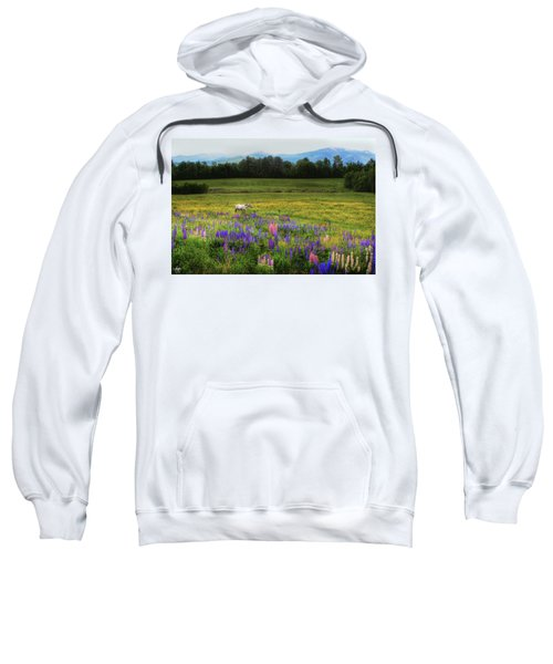 Taking In The View Sweatshirt