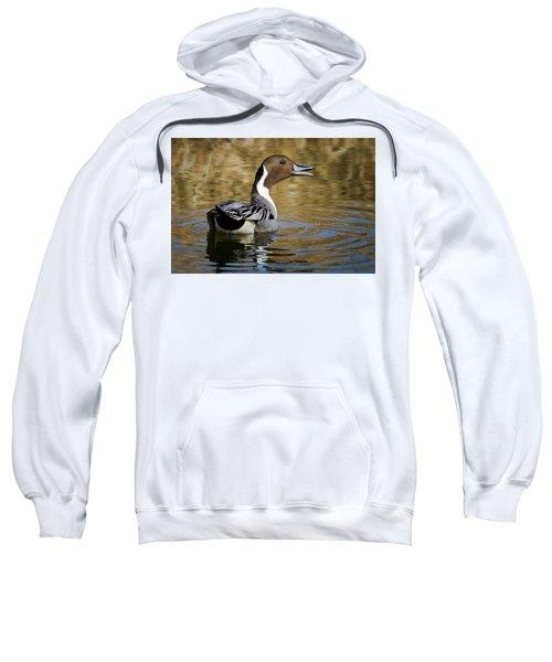 Talking Pintail Sweatshirt