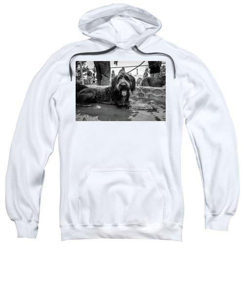Tdif 65 Sweatshirt