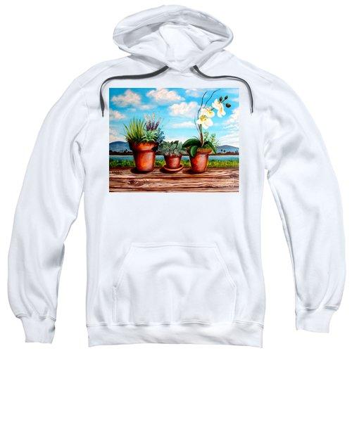 Terra Cotta Blues Sweatshirt