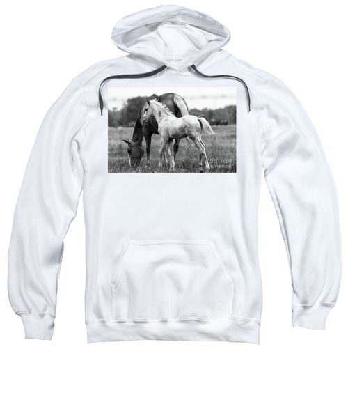 Texas Ranch  Sweatshirt