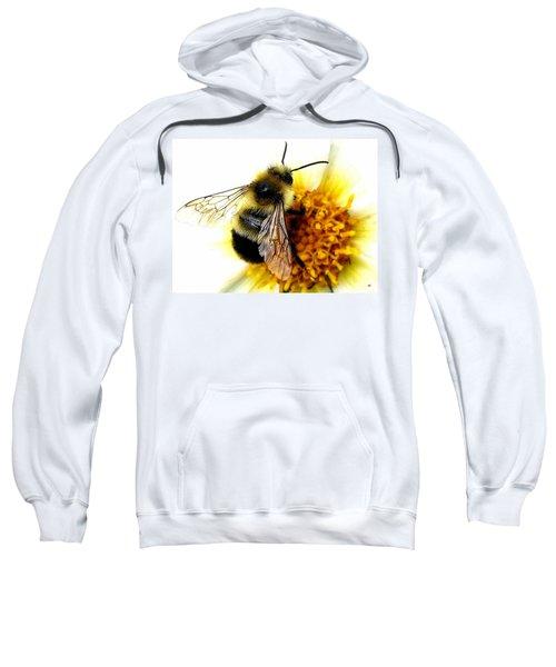 The Buzz Sweatshirt