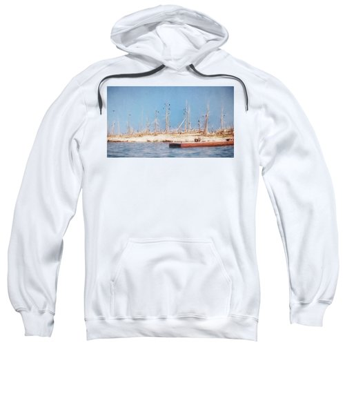 The Cormorants At Deaths Door Sweatshirt
