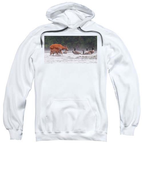 The Encounter Sweatshirt