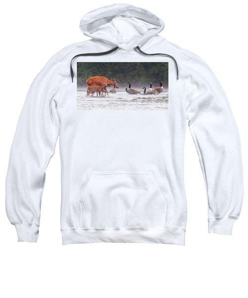 The Encounter Sweatshirt
