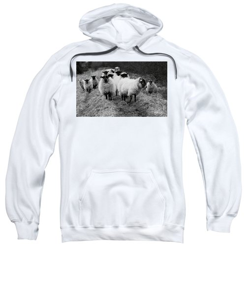 The Flock 1 Sweatshirt