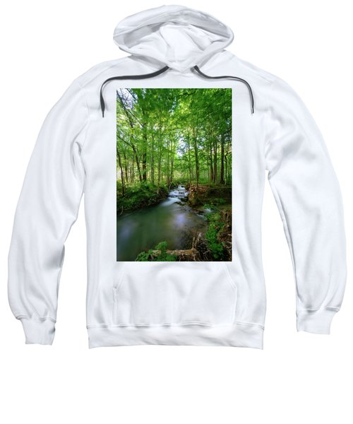 The Green Forest Sweatshirt