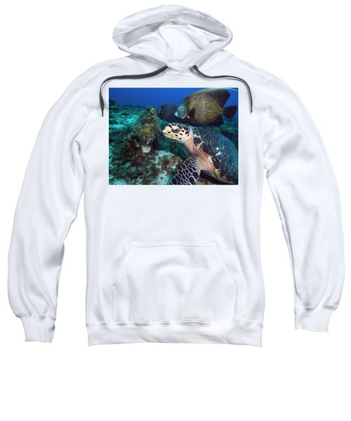 The Green Turtle And The Angelfish Sweatshirt