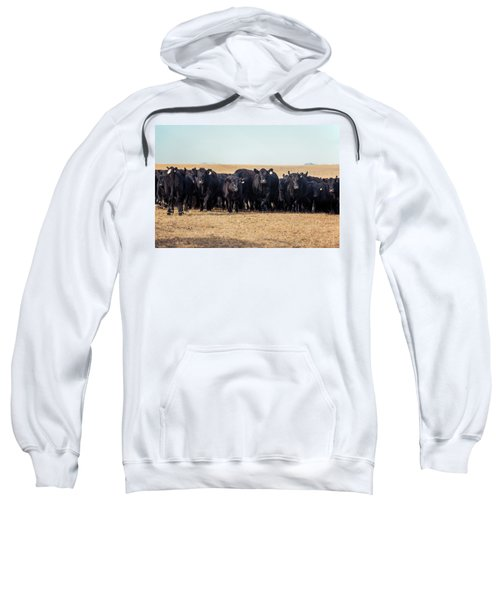 The Herd Rushes In Sweatshirt