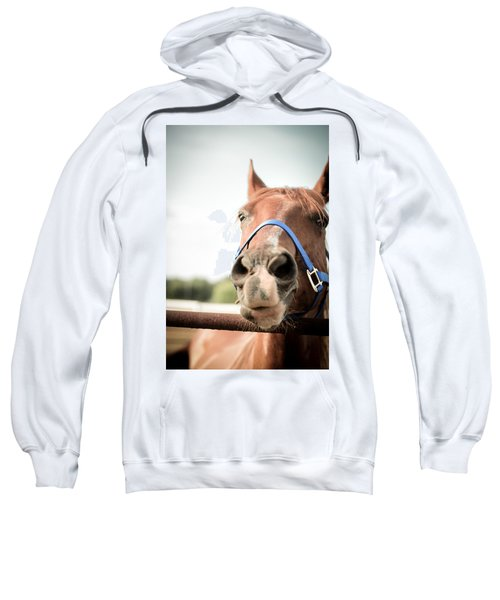 The Horse's Mouth Sweatshirt