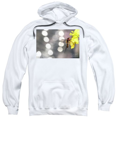 The Hoverfly Sweatshirt