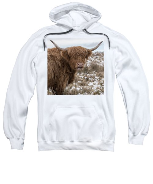 The Laughing Cow, Scottish Version Sweatshirt by Jeremy Lavender Photography