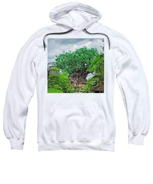 The Living Tree Walt Disney World Mp Sweatshirt