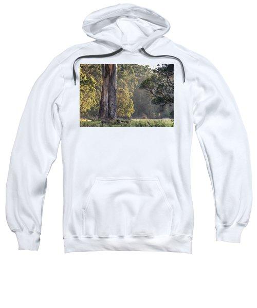 The Meadow Sweatshirt