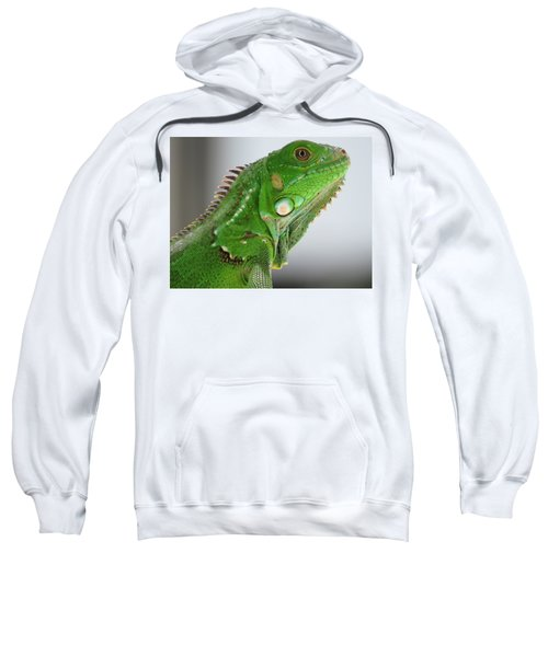 The Omnivorous Lizard Sweatshirt