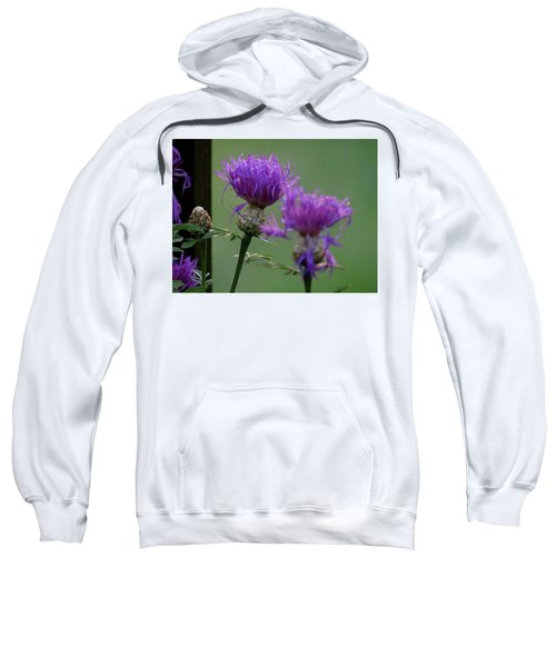 The Purple Bloom Sweatshirt