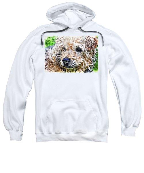 The Scruffiest Dog In The World Sweatshirt