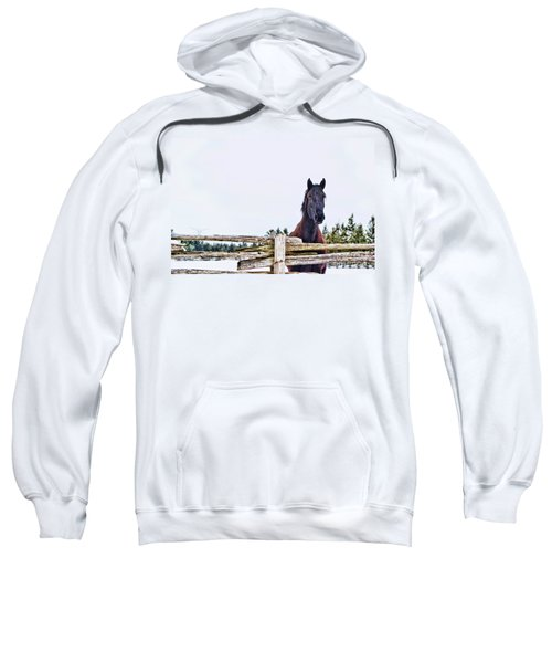 The Watcher 2 Sweatshirt