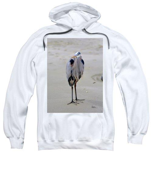 The Watcher Sweatshirt