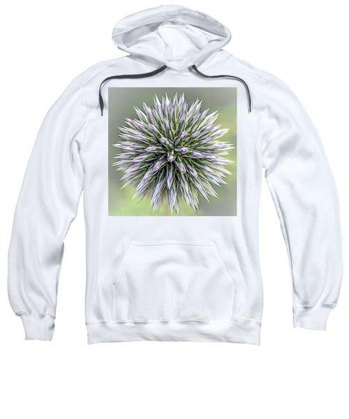 Thistle II Sweatshirt
