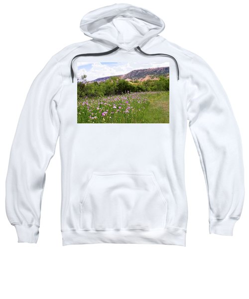 Thistles In The Canyon Sweatshirt