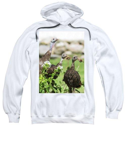 Threes A Crowd Sweatshirt