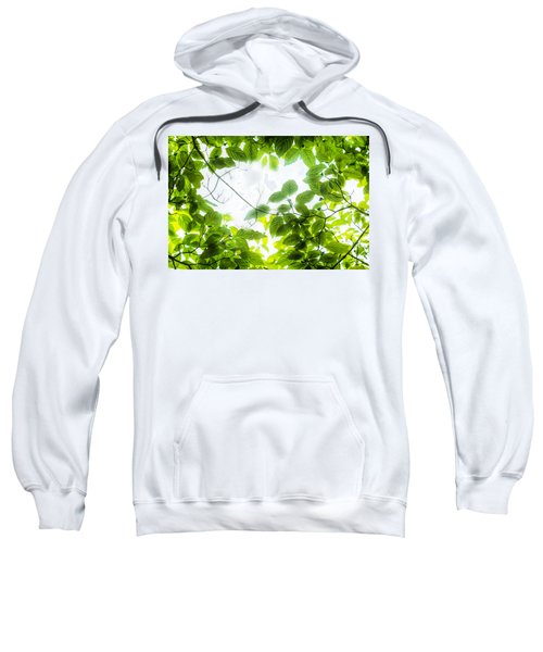 Through The Leaves Sweatshirt