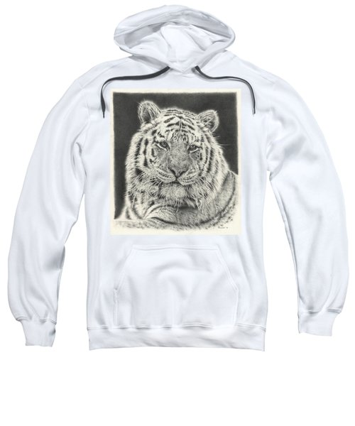 Tiger Drawing Sweatshirt