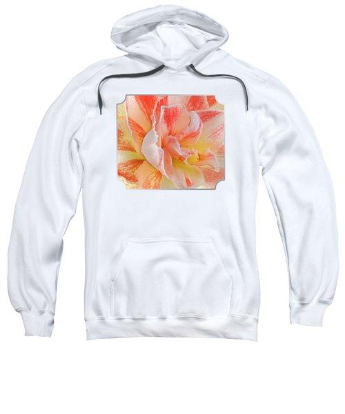 Timeless Beauty Sweatshirt