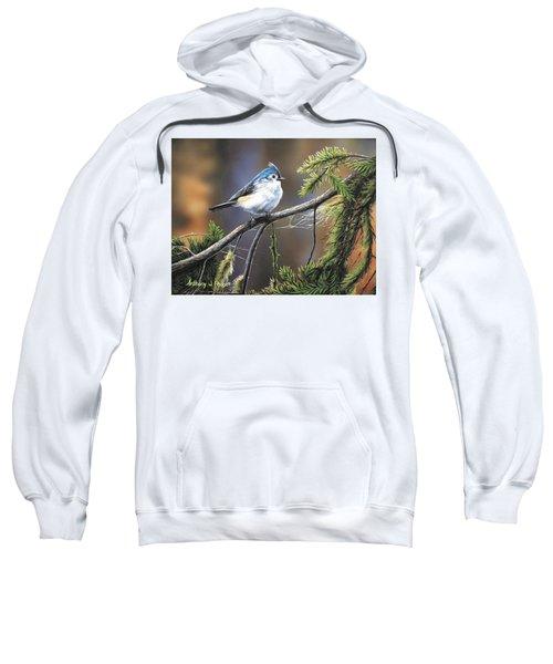 Titmouse Sweatshirt