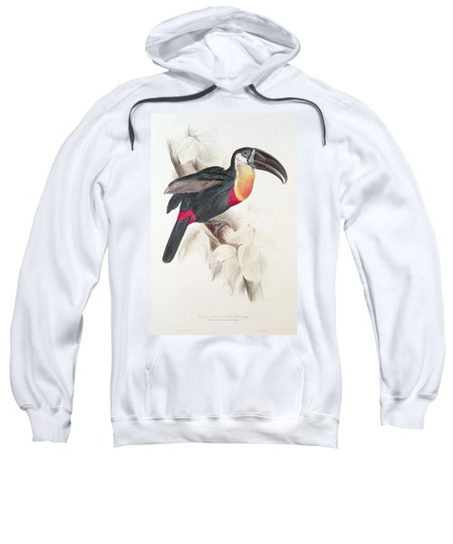 Toucan Sweatshirt by Edward Lear
