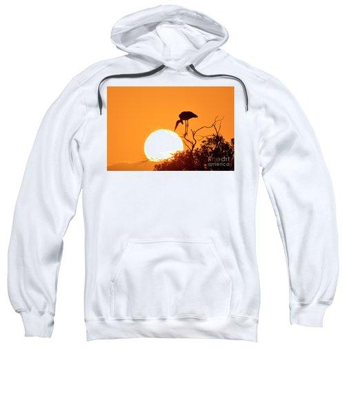 Touching The Sun Sweatshirt