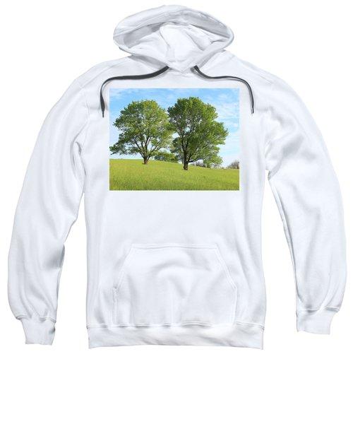 Summer Trees 4 Sweatshirt